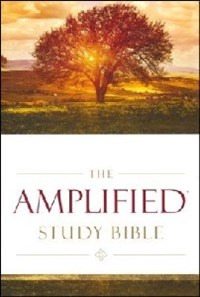 Picture of AMPLIFIED STUDY BIBLE