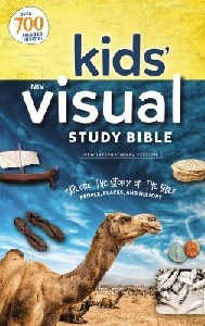 Picture of NIV KIDS VISUAL STUDY BIBLE