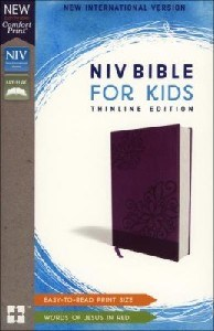 Picture of NIV KIDS BIBLE PURPLE