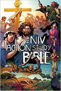 Picture of NIV ACTION STUDY BIBLE