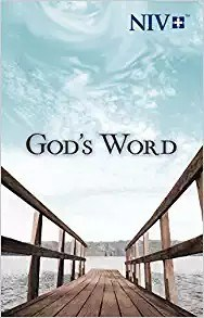 Picture of NIV GODS WORD L/P P/B